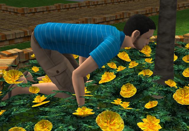 Sims2EP9%202018-03-16%2020-12-24-27.jpg