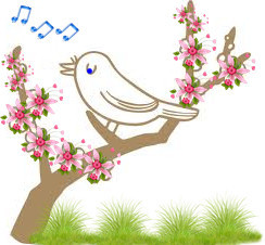 laula.jpg