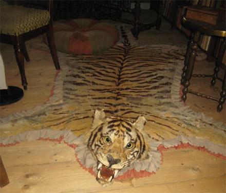 tiikeri.jpg