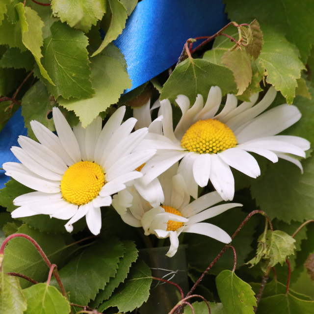 Kukkia%201.jpg