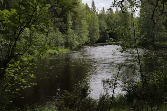 Kalliuskoski1.jpg
