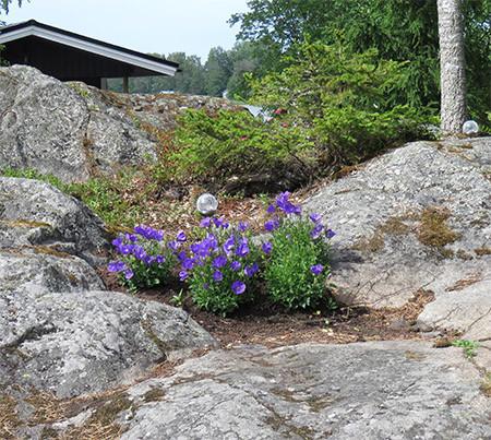 kivikossa.jpg