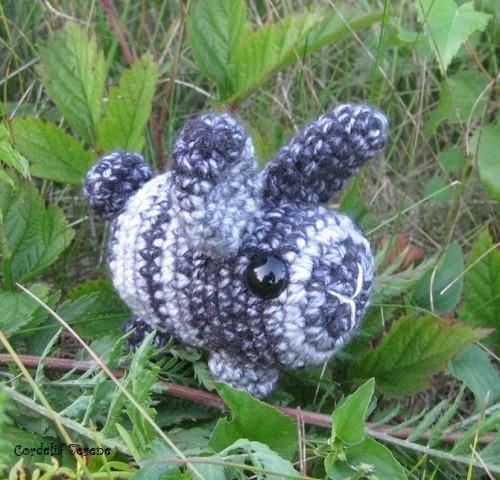 bunny1831.jpg