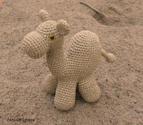 camel1819.jpg