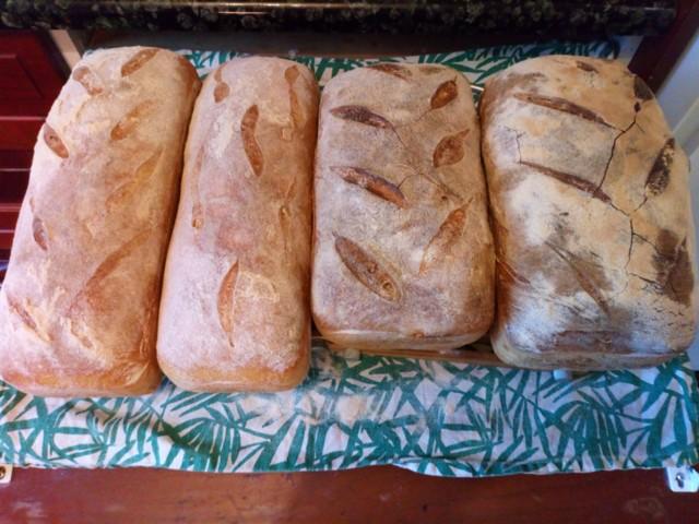leiv%C3%A4t%20toiseksi%20uusin.jpg
