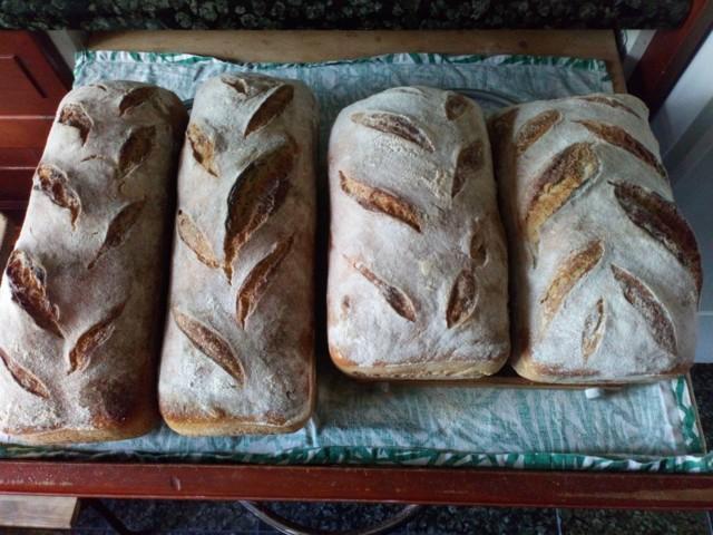 leiv%C3%A4t%20uusin.jpg