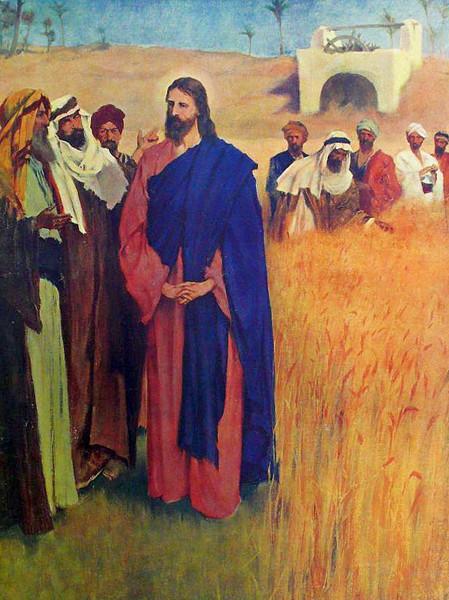 Jeesus_kulkee_opetuslapsineen_viljapello