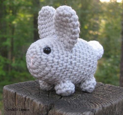 bunny1885.jpg
