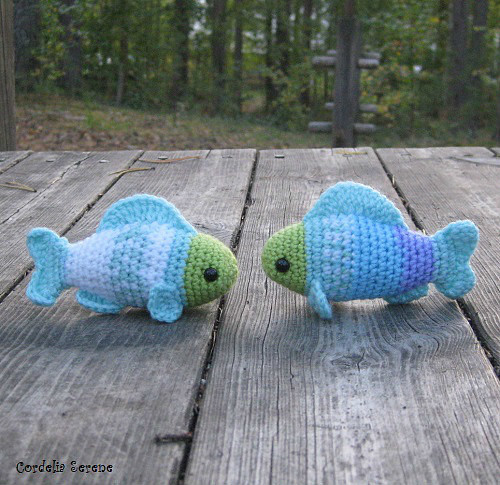fish2015.jpg
