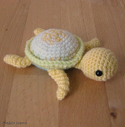 turtle2029.jpg