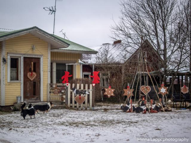 Jouluvalmisteluja-11.jpg