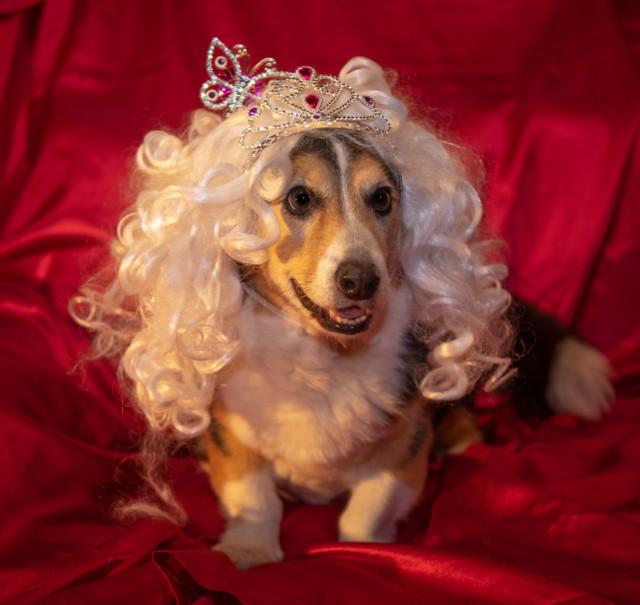 17.Prinsessa%20Ruusuneen.jpg
