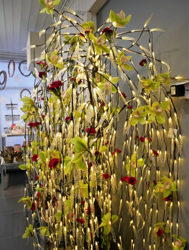 orkideapuu.jpg