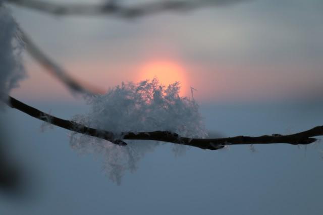 Lumihiutaleita%20vastavalossa.jpg