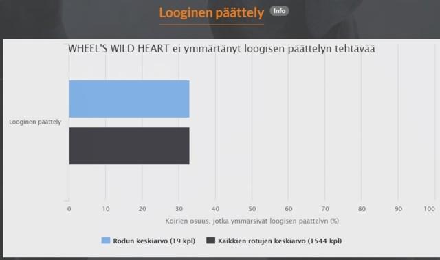 looginen%20p%C3%A4%C3%A4ttely%20hertta.j
