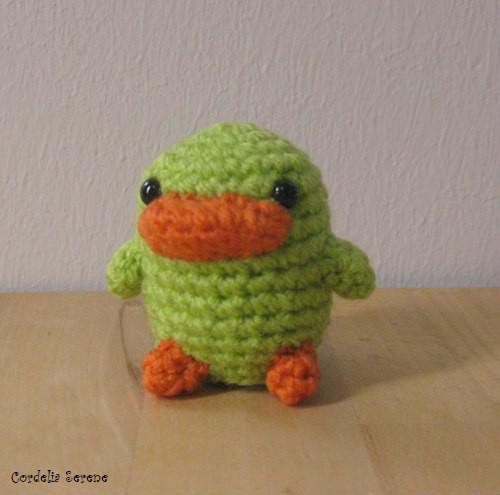 duck2424.jpg