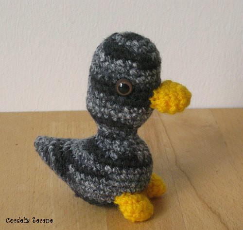 duck2480.jpg