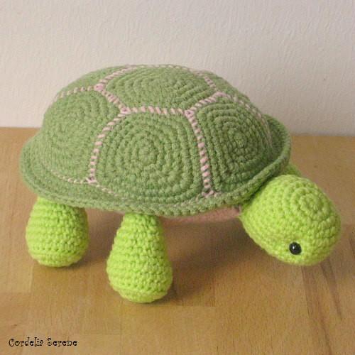 turtle2477.jpg