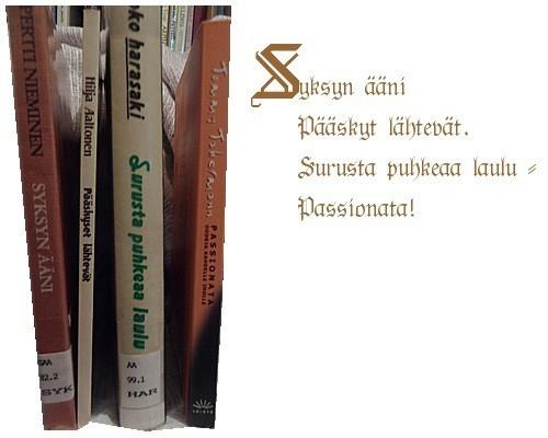 runokuva8.jpg