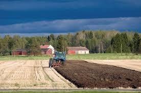 maatalous.jpg