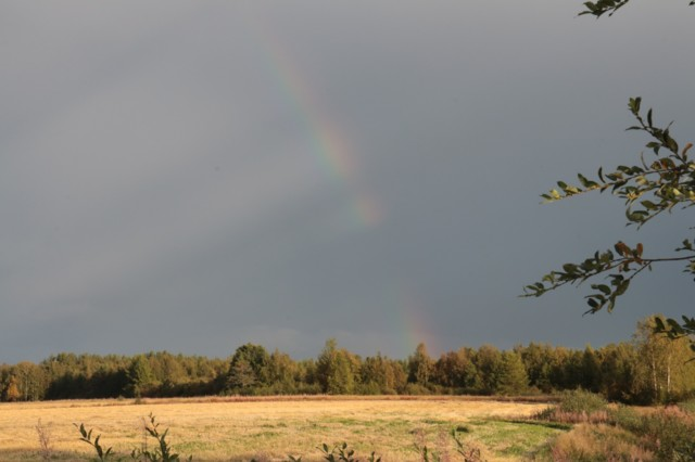 Sateenkaari.jpg