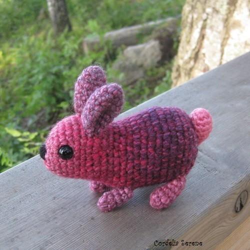 bunny2610.jpg