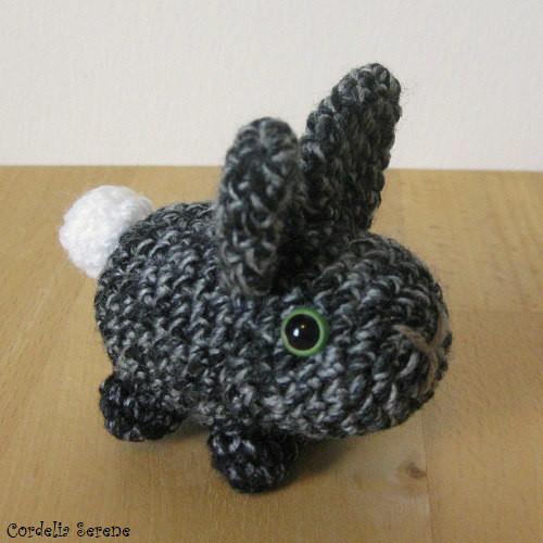bunny2696.jpg