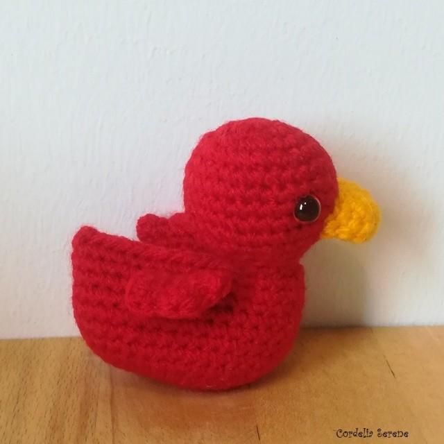duck164022.jpg