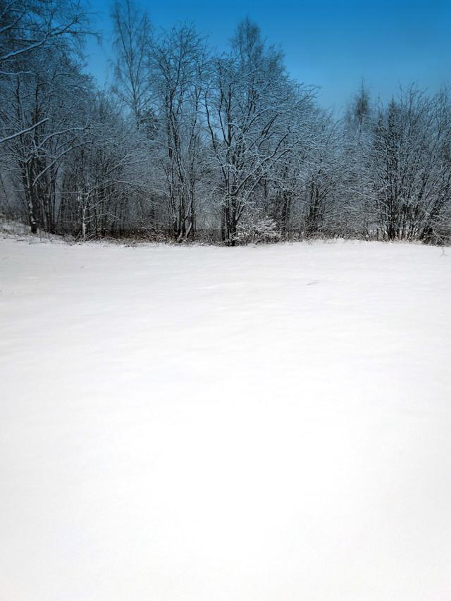 lunta2.jpg