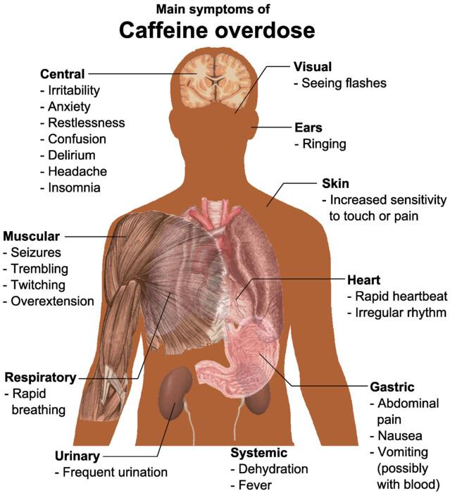 Main_symptoms_of_Caffeine_overdose.jpg