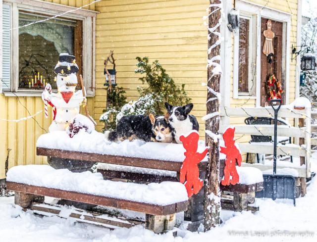 Jouluavajaiset-3.jpg