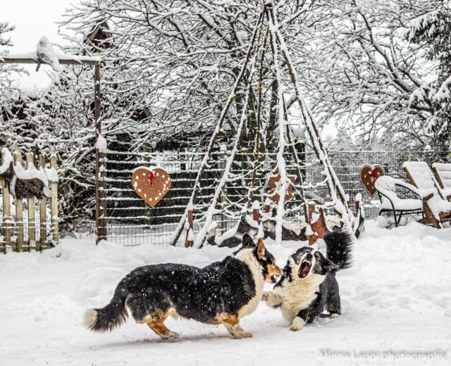 Jouluavajaiset-6.jpg