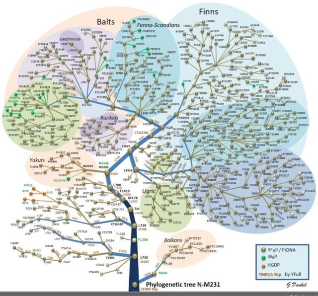 SNP-N-TREE-FIN-768x716.jpg