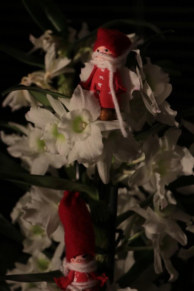Joulumatka5.jpg