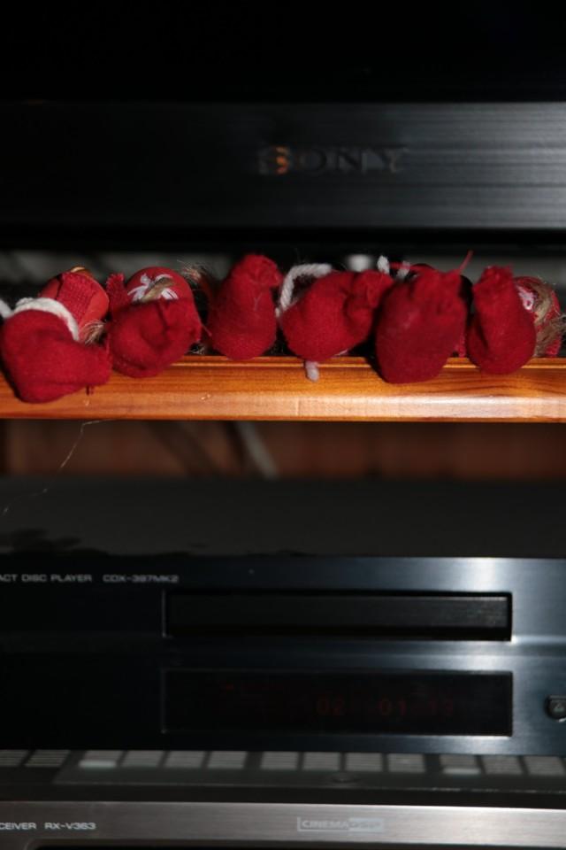 Joulumatka_odotusta.jpg