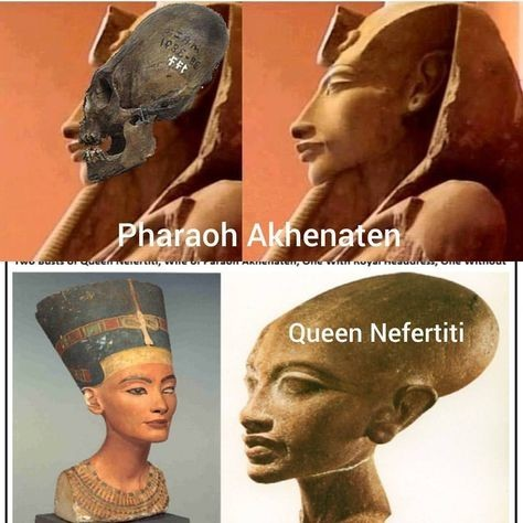 -queen-nefertiti-the-egyptian.jpg