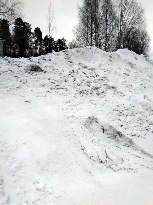 luntapaljon.jpg