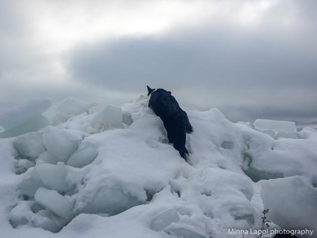 Lumivuorila%20taas-6.jpg
