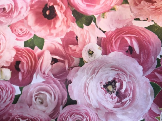 blomma2.jpg?1594361269