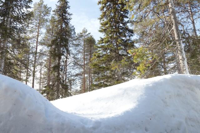 Lumipenkka.jpg