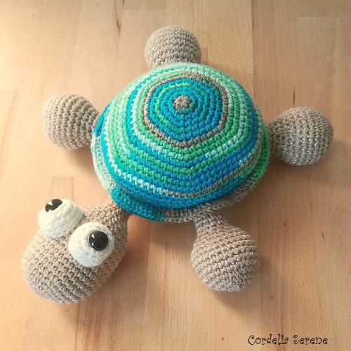 turtle140521.jpg