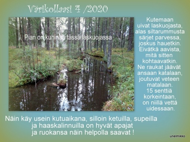2020-03-017.jpg