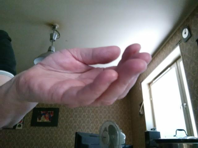 ger...hand.jpg?1598224438