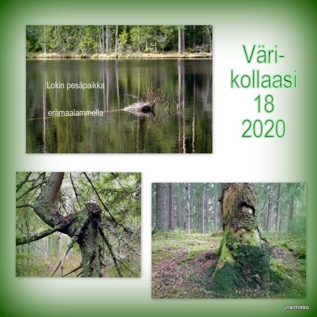2020-05-03.jpg