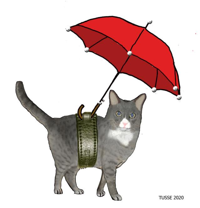 mise_sateenvarjoteline.jpg