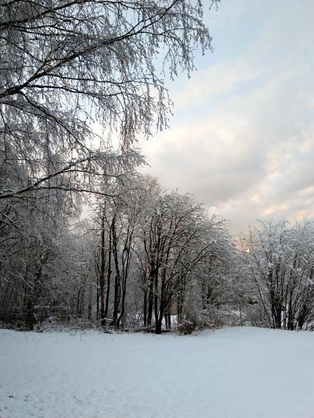 snowv.jpg