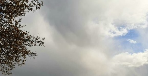 kvist-och.himmel.jpg?1589295307