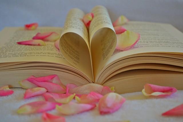 book-1169437_1280.jpg