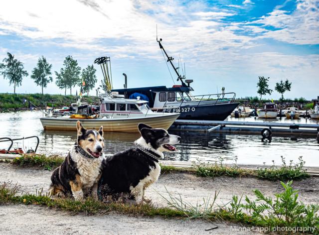 Kalastusreissulla-7.jpg