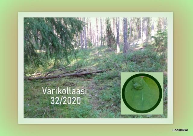 2020-08-09.jpg